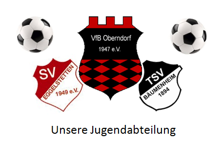 files/oberndorf/files/fussball/aTitelbildJugendneu1819.png